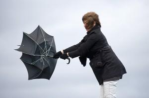 Wind & Hail Damage